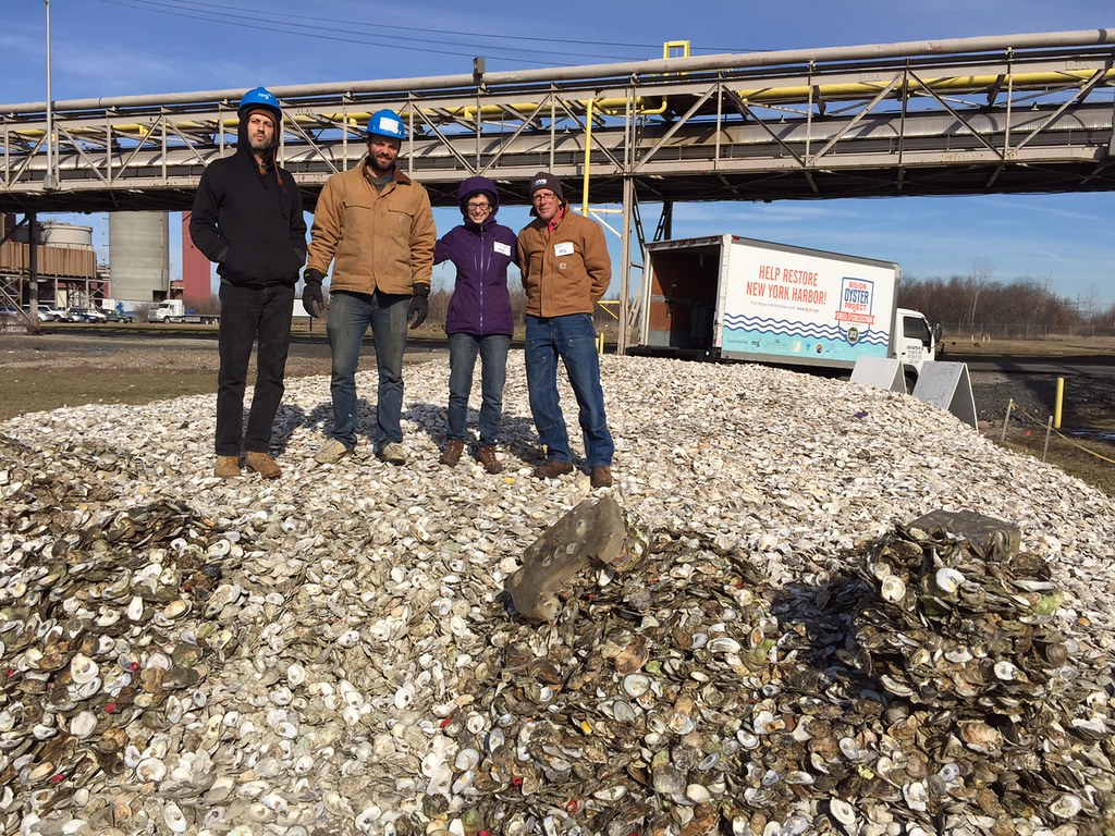 Staten Island Billion Oyster Project