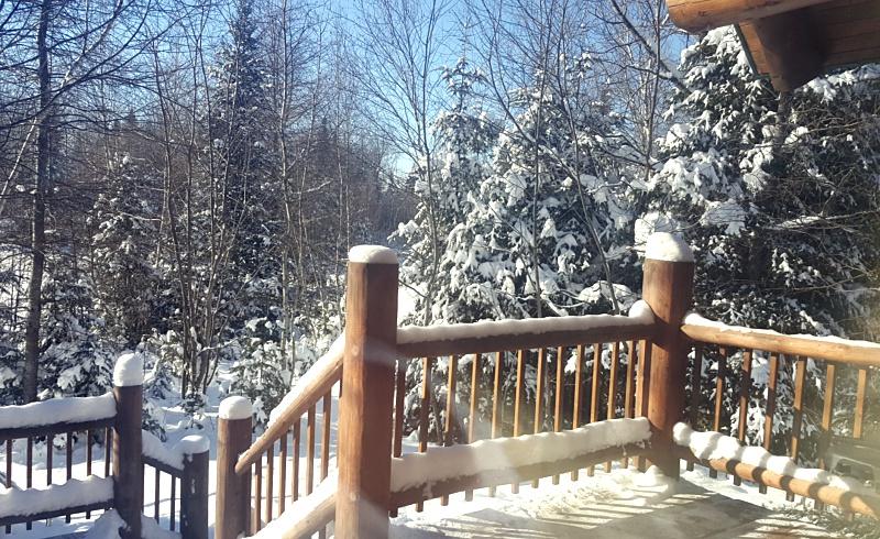Au Chalet en Bois Rond winter