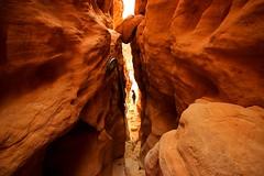 inside the canyon - Timna-park - Negev-desert - Israel