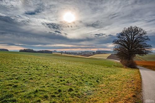 germany landscape bayern deutschland bavaria outdoor feld himmel landschaft baum hdr on1 pfaffenhofenanderglonn unterumbach perfecteffects