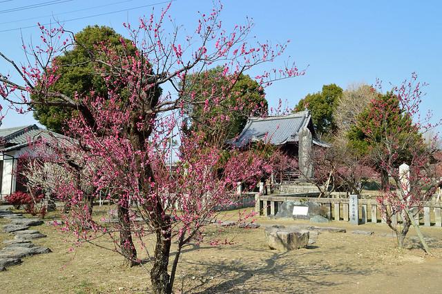 宮ノ陣神社 Miyanojin Shrine