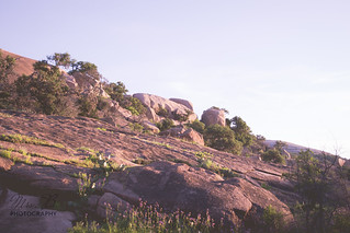 Enchanted Rock-15