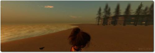 on the beach at dawn