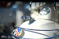 Jaguar Mudguard Crest