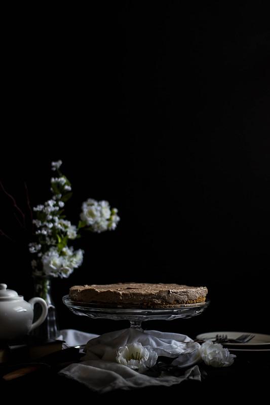No-Bake S'mores Cookie Butter Cheesecake // TermiNatetor Kitchen