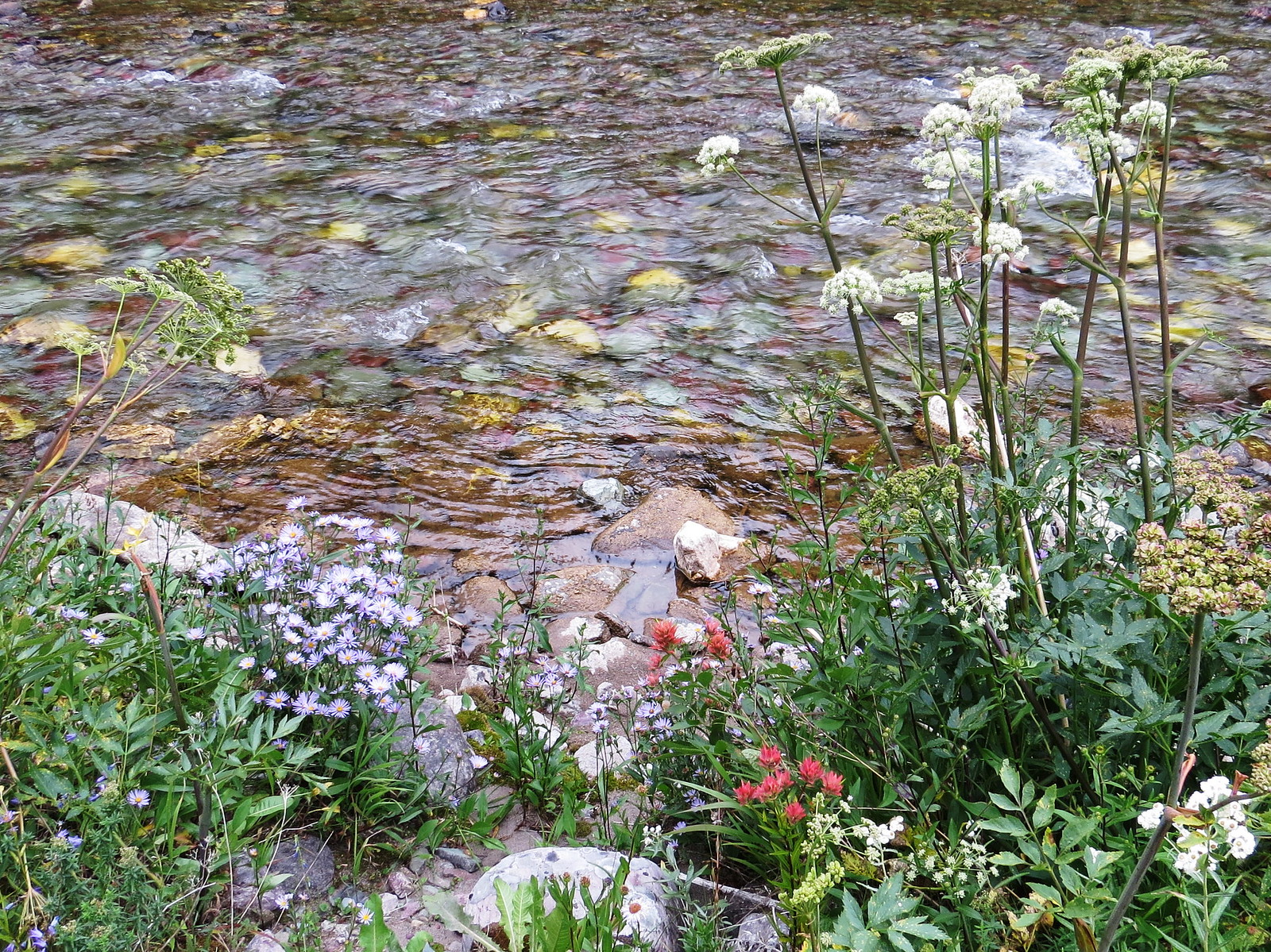 Two Medicine Creek, Blackfeet Glacier, Montana