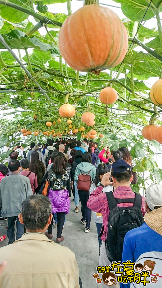 屏東熱帶農業博覽會 _576