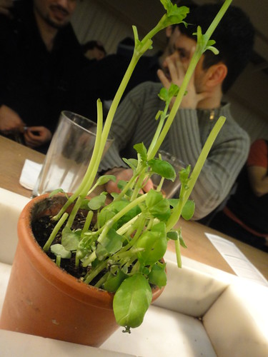 Vapiano (London Oxford Street)