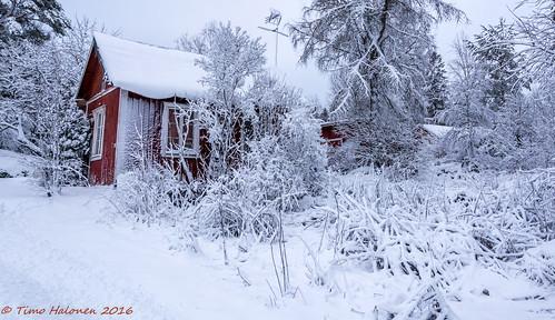 winter finland cabin nikon lumi talvi mökki dx laihia ostrobothnia eteläpohjanmaa d5200 isokylä hopinmäki