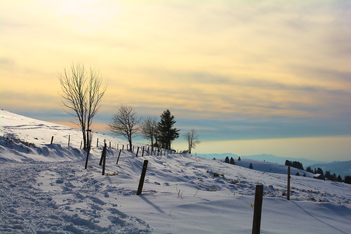 blue trees winter sunset sky white mountain snow clouds 35mm fence landscape evening outdoor path blackforest schauinsland nikond7100