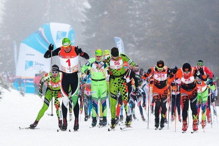 Víc takových závodů!  Aneb Šumavský Skimaraton, pohled ze stopy do stopy