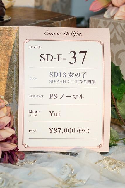 HTドルパ京都13 フルチョイスワンオフ SD F-37
