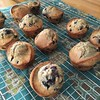 Lemon blueberry muffins made with whole wheat pastry flour, look at the rise on these babies! Basic muffin recipe from @kingarthurflour