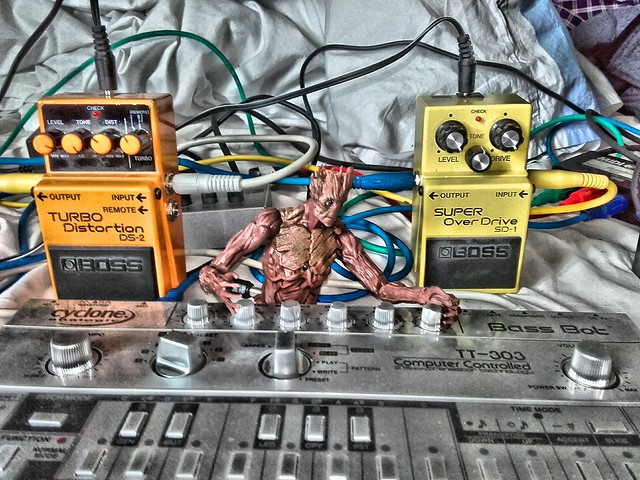 Photo:Groot loves the acid By sebilden