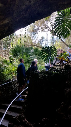 26538171196 f7f3001840 Tag 6, Cuevas del Drach