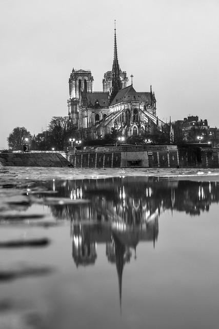 Notre-Dame de Paris in a puddle