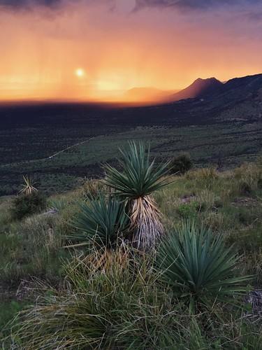 sunset arizona storm mountains nature rain landscape photography hiking az monsoon goldenhour sierravista coronadopeak coronadonationalmemorial iphoneography vscocam