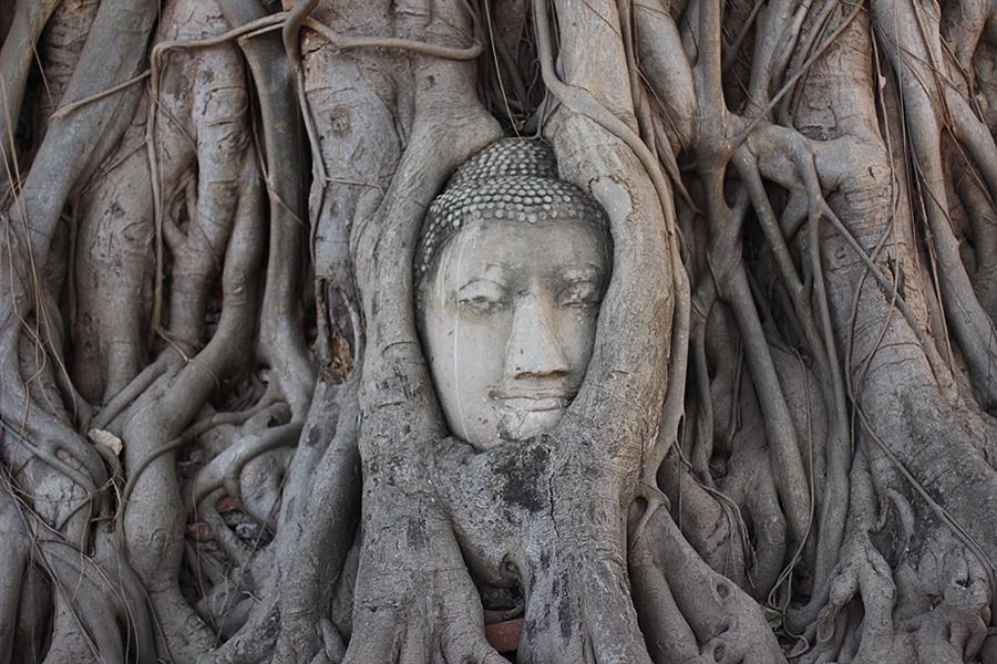 Wat-Maha-That_14