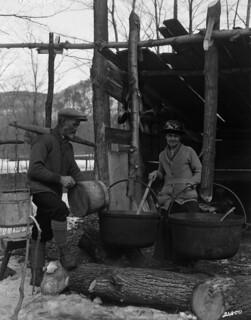 Boiling maple sap in the sugar bush / Ébullition de l'eau d'érable dans une érablière