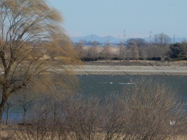 2016年 1月24日 渡良瀬遊水地 今日の走り