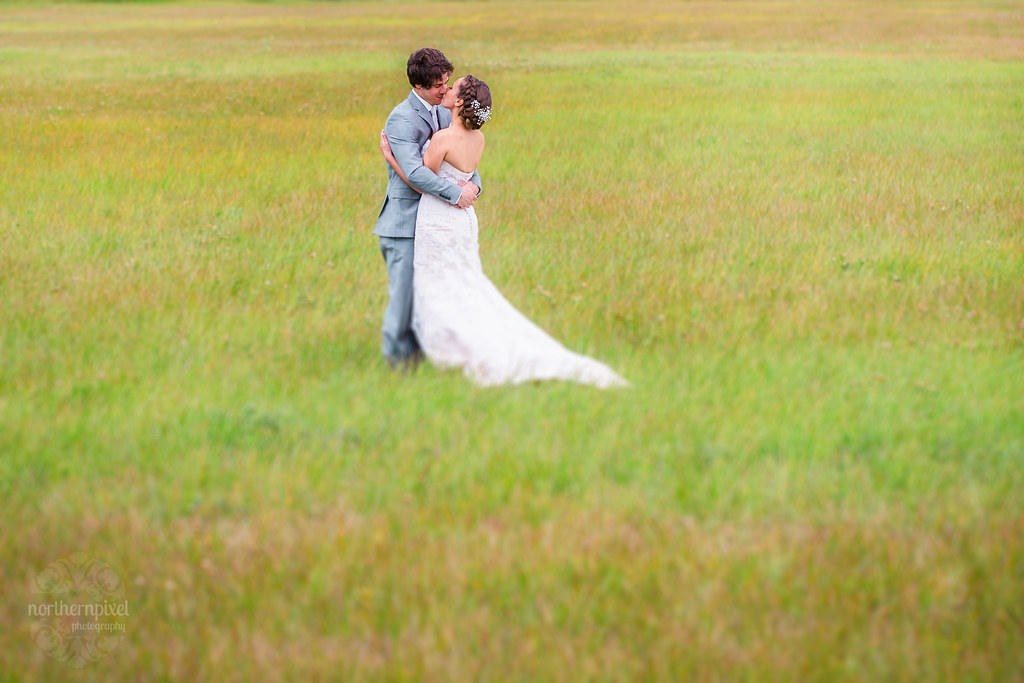 Wedding Photos in the Field - Tete Jaune BC