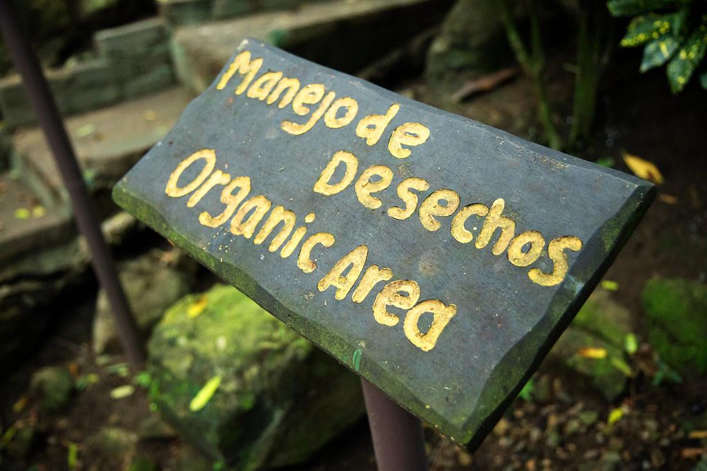 Manuel Antonio Hotel - Parador Resort - Microgreens