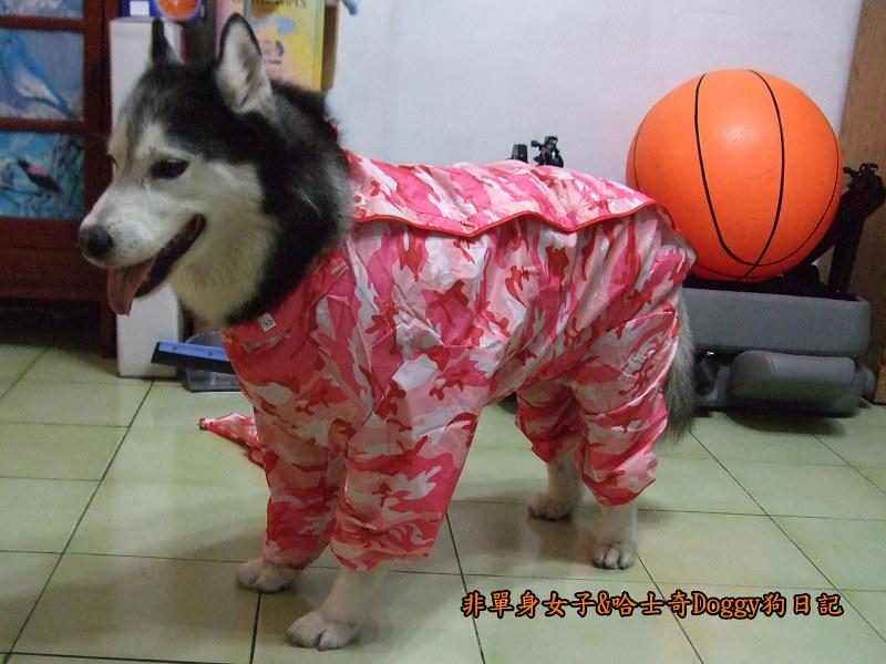 寵物雨衣迷彩服07