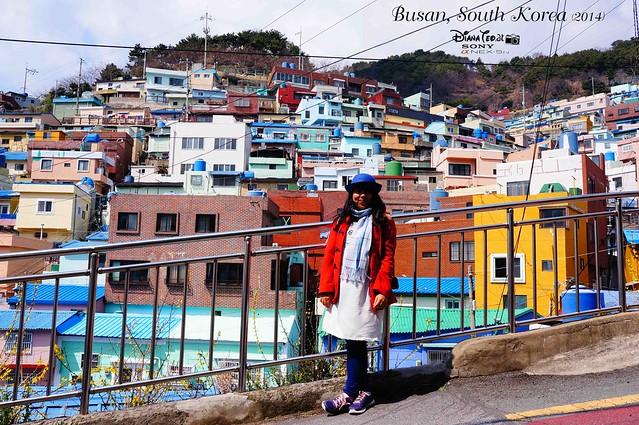South Korea 2014 - Day 02 Busan Gamcheon Culture Village 11