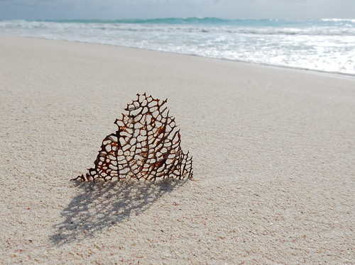 Tulum - strand