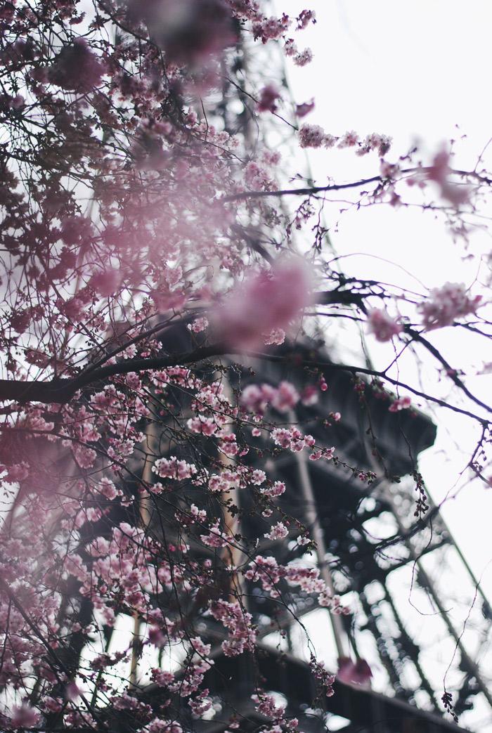 Foto-28.03.16,-23-14-34-2