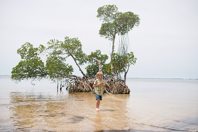 boy-in-water-in-punta-gorda-florida-mangrove 06-750