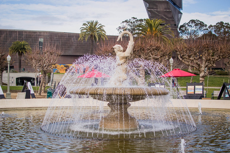 Golden State Park Fountain