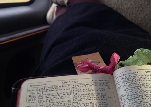 I've Been Lazy // Excerpts on Bible Study