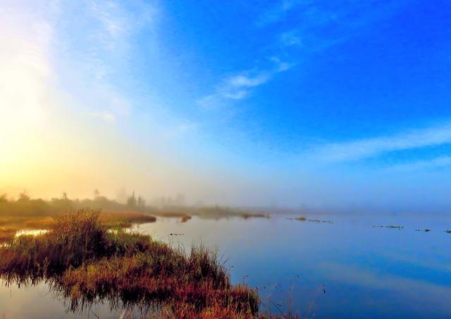 Sun piercing fog HDR 20160109