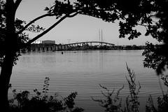 Rügenbrücke b/w