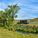 Camping at Lake McGregor, MacKenzie Country by flyingkiwigirl