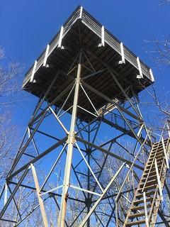 Observation tower on Wesser Bald