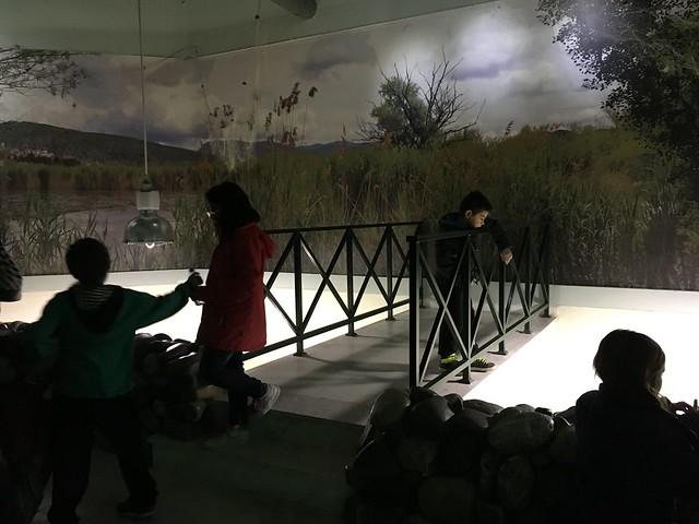 Επίσκεψη της Γ΄τάξης στο ενυδρείο και στο κέντρο περίθαλψης αγρίων ζώων