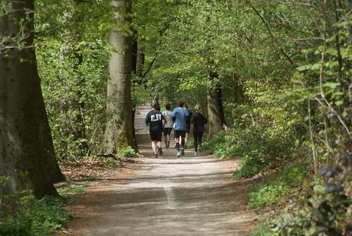 1. Funtrail Gysenberg 2016 - Wald 3