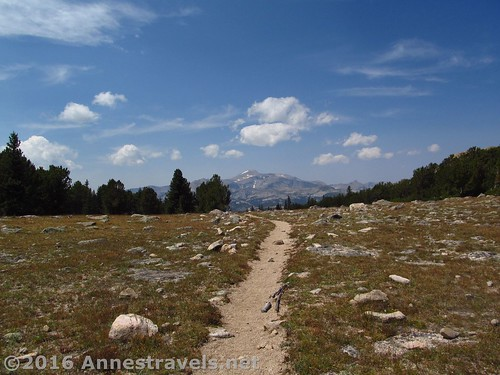 The trail through Stough Creek Pass, Wind River Range, Wyoming