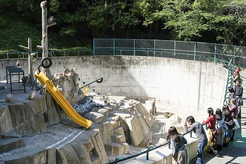 JG C4 19 025 福岡市動植物園 / Fuji X-Pro2 × XF 35mm F2 R WR