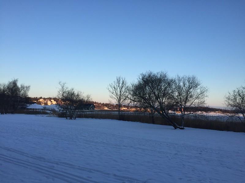Näsbypark