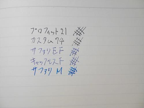P1060815.JPG