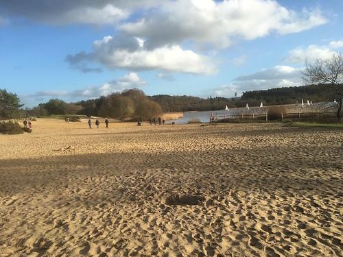The beach at Frensham Great Pond