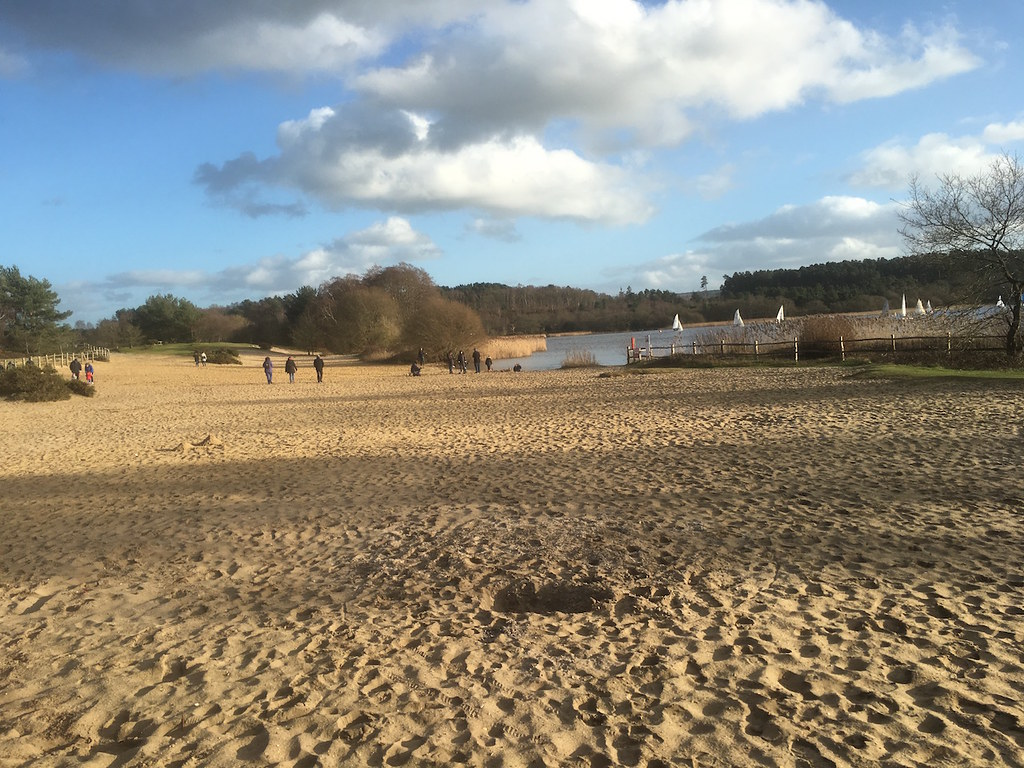 The beach at Frensham Great Pond Bentley to Farnham walk