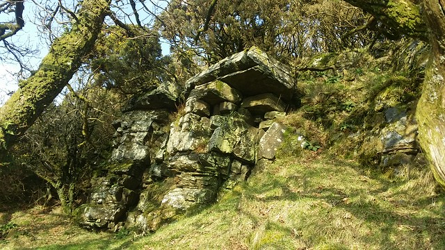 Ashbury Tor: from below