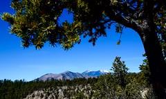 Humphrey Peak, Arizona