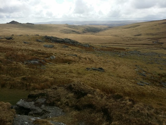 View from Crow Tor