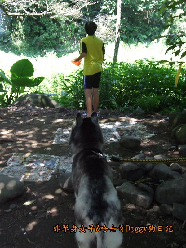 Doggy三芝八連溪13