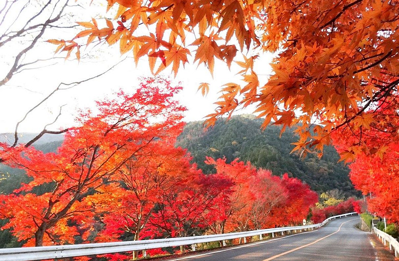 日本嵐山高雄保津川02